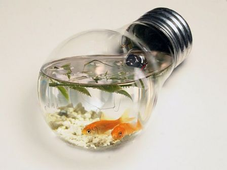 Light-Bulb-Aquarium_m.jpg