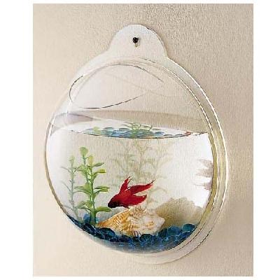 Des aquariums originaux for Bulleur pour aquarium boule
