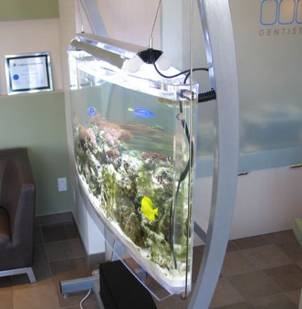 Des aquariums originaux for Aquarium interieur