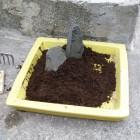 Création mini jardin zen