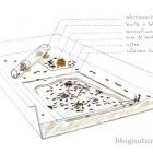 Schéma fourmilière idéale